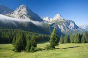 moving_company_austria